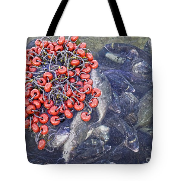 Today's Harvest Tote Bag by Stelios Kleanthous