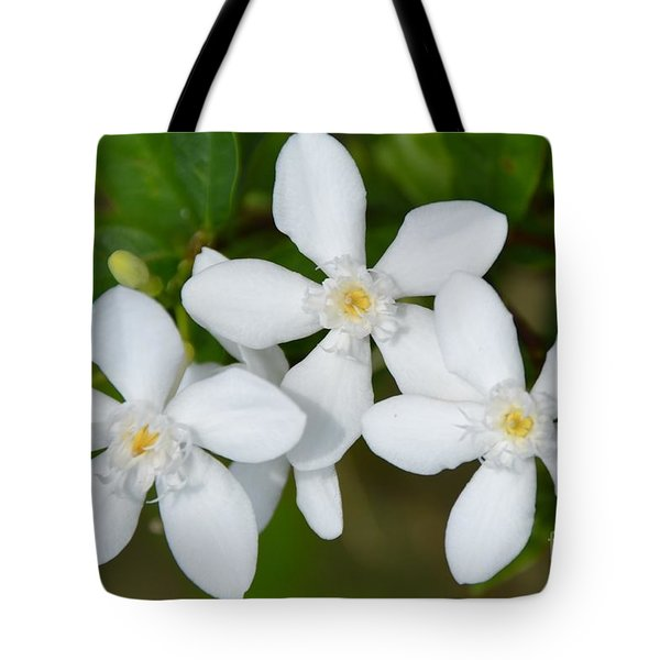 Tote Bag featuring the photograph Togetherness by Darla Wood