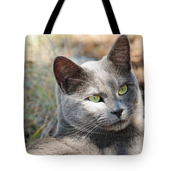 Tote Bag featuring the photograph Tom Cat by Susie Rieple
