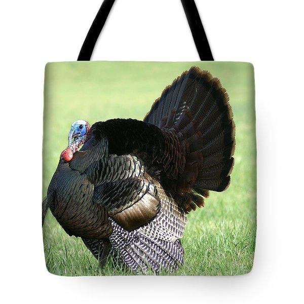 Tom Turkey Tote Bag