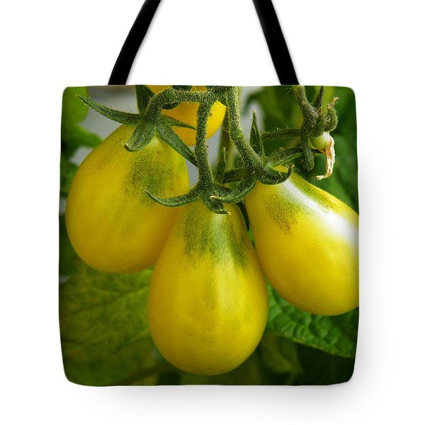 Tomato Triptych Tote Bag by Brian Boyle