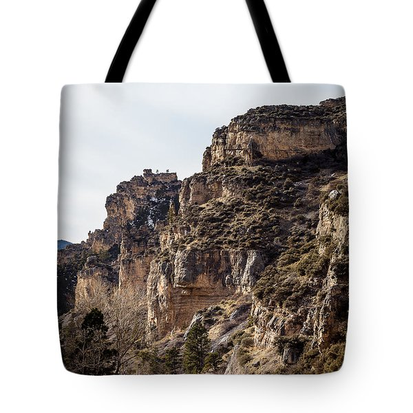 Tongue River Canyon Tote Bag