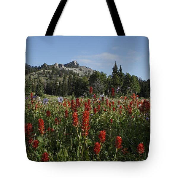 Tony Grove Lake Tote Bag