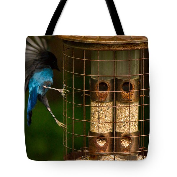 Too Small For A Stellar Jay Tote Bag by Eti Reid