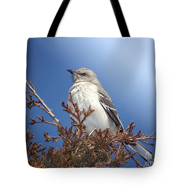 Top Of My Game Tote Bag by Betty LaRue
