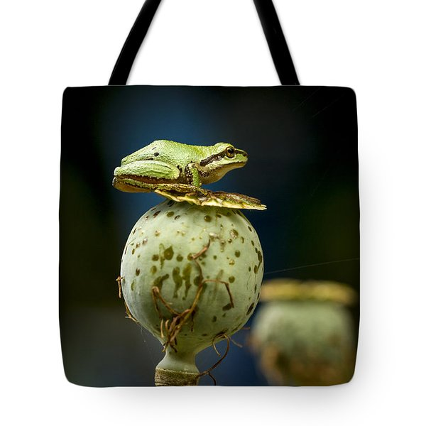 Topper Tote Bag by Jean Noren