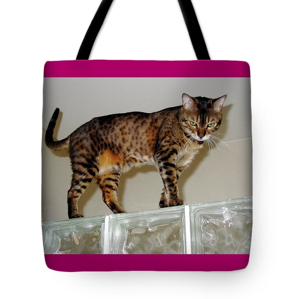 Tote Bag featuring the photograph Tora On Glass II by Phyllis Kaltenbach