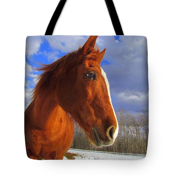 Tori Girl Tote Bag