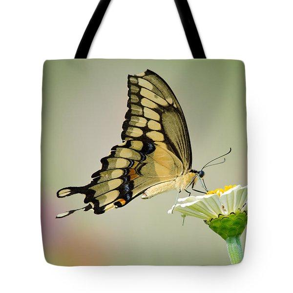 Torn Beauty Tote Bag