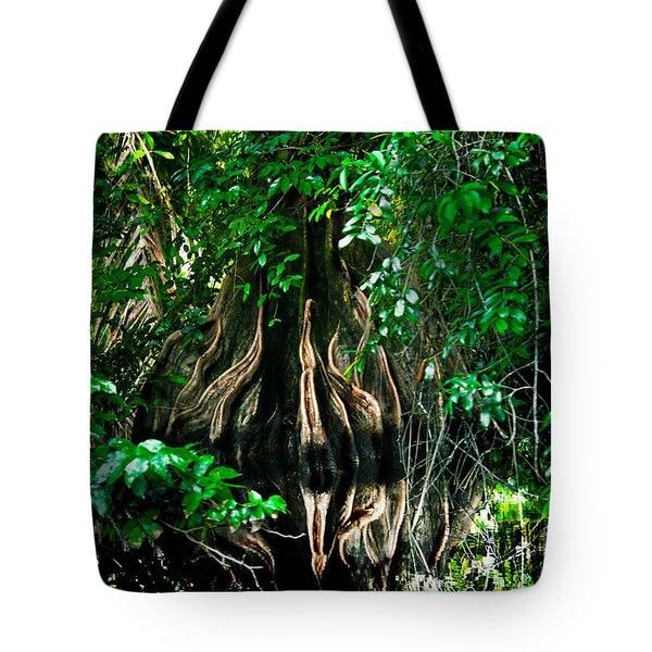 Tortuguero River Tote Bag by Gary Keesler