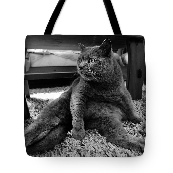 Tote Bag featuring the photograph Totally Relaxed by Laura Melis