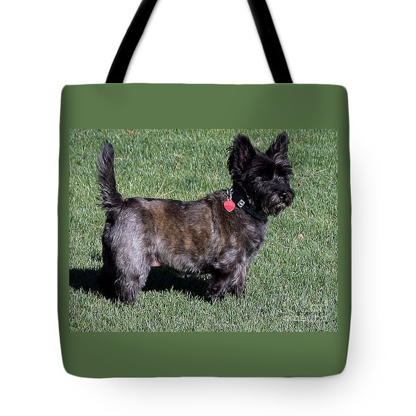 Toto's Sister Sweetpee Tote Bag by Jay Milo