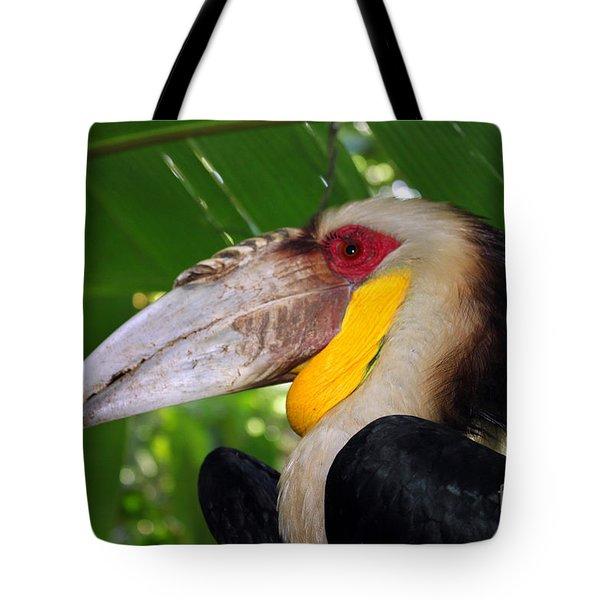 Toucan Tote Bag by Sergey Lukashin