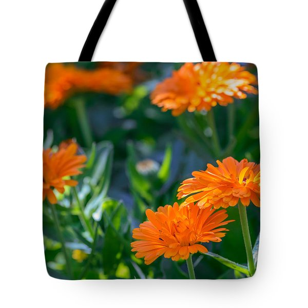 Touch By Light Tote Bag