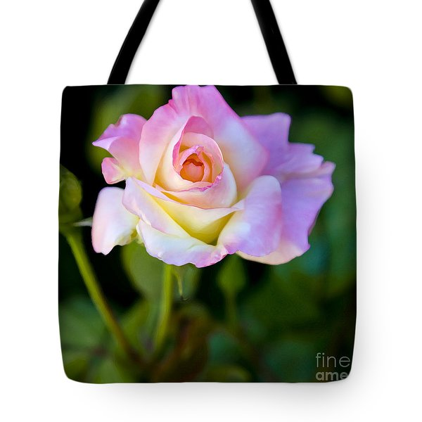 Tote Bag featuring the photograph Rose-touch Me Softly by David Millenheft