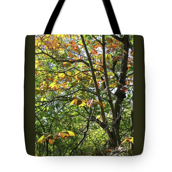 Touch Of Autumn Tote Bag by Ann Horn