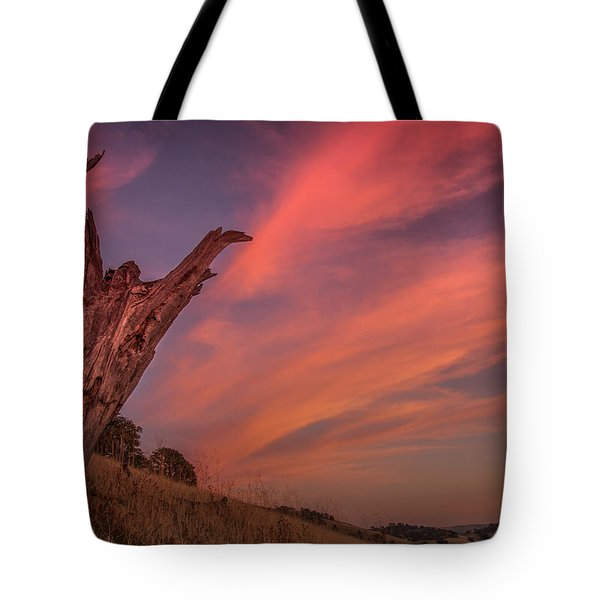 Touch The Sky Tote Bag by Marc Crumpler