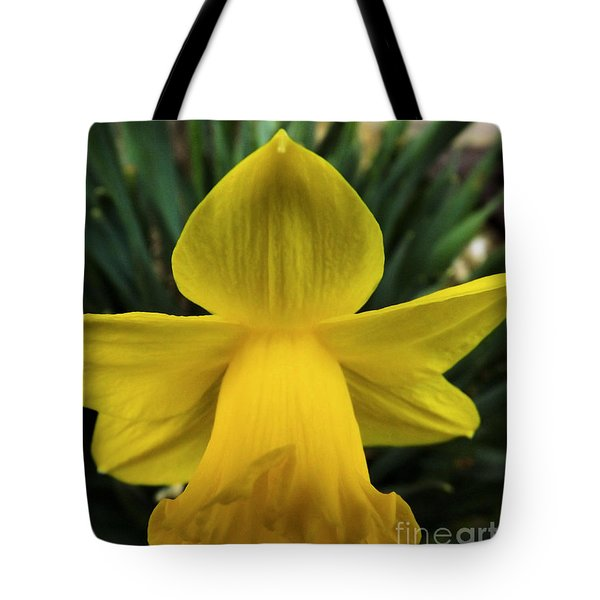 Tote Bag featuring the photograph Touched By An Angel by Robyn King