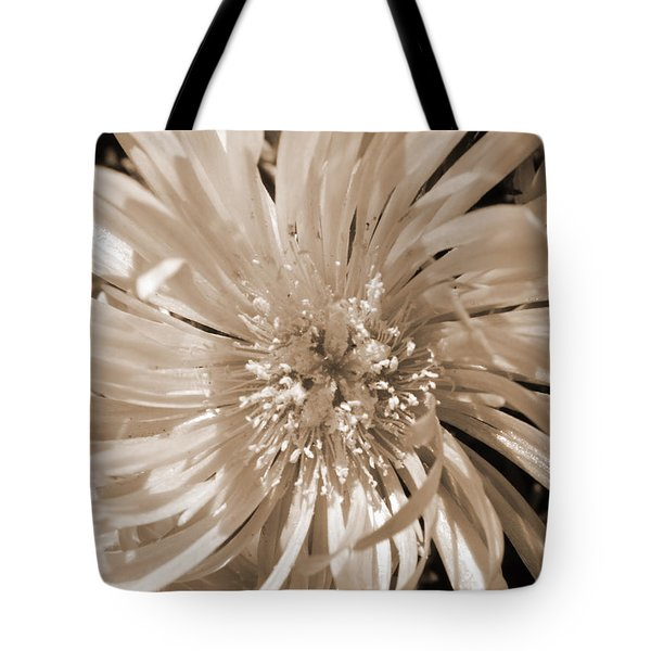 Touched By Light Tote Bag by Leana De Villiers