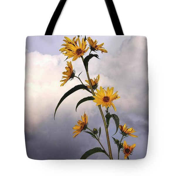 Tote Bag featuring the photograph Towering Sunflowers by Rob Graham