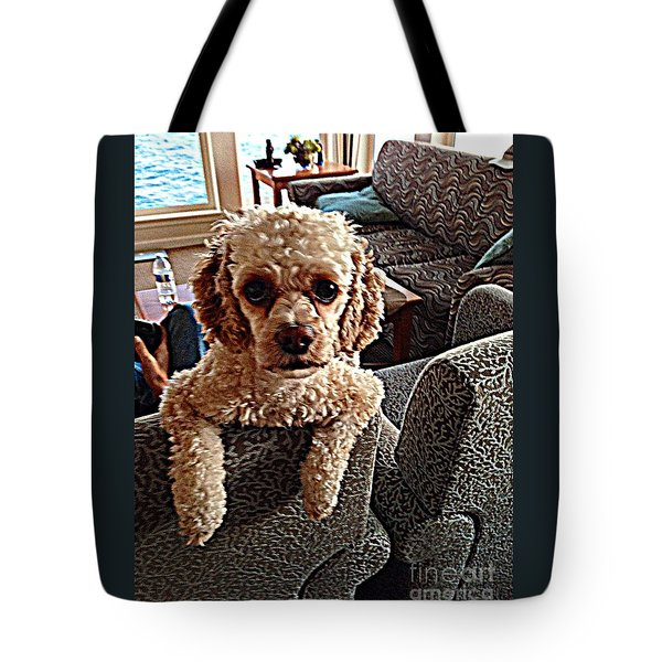 Toy Cockapoodle 1 Tote Bag by Richard W Linford
