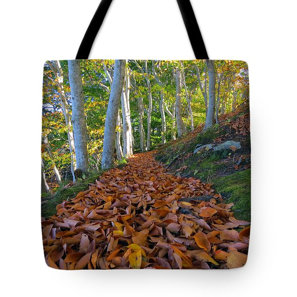 Tote Bag featuring the photograph Trailblazing by Dianne Cowen