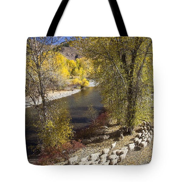 Trailing Of The Shep Tote Bag