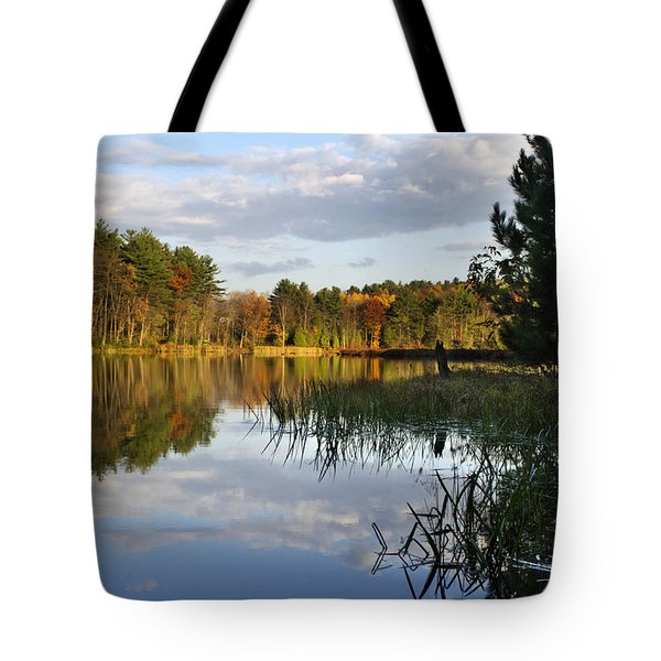 Tranquil Autumn Landscape Tote Bag by Christina Rollo