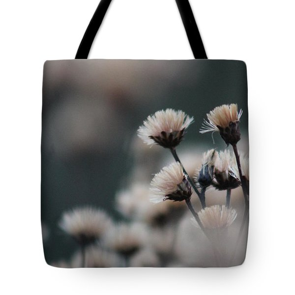 Tranquil Tote Bag by Bruce Patrick Smith