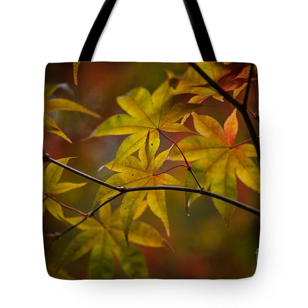 Tranquil Collage Tote Bag