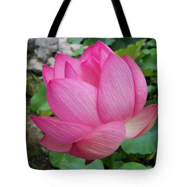 Tranquil Lotus  Tote Bag by Lingfai Leung