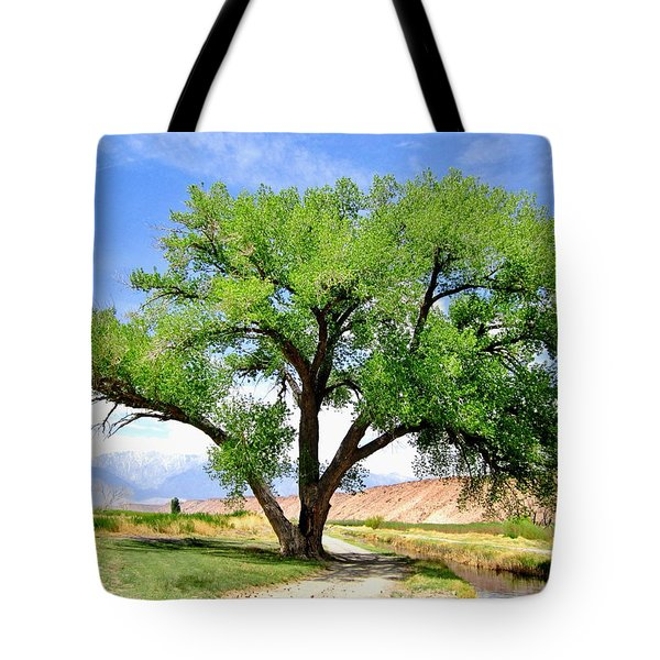 Tote Bag featuring the photograph Tranquil Scene by Marilyn Diaz