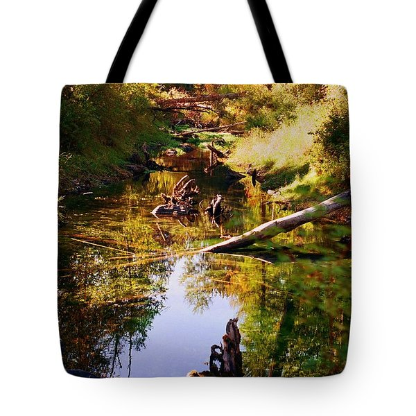 Tranquil Space Tote Bag by Kathy Bassett