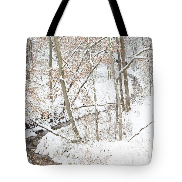 Tranquil Winters Creek Tote Bag
