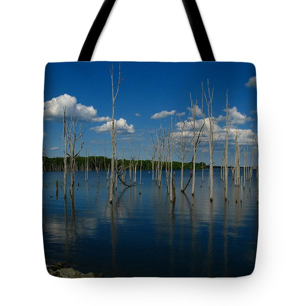 Tote Bag featuring the photograph Tranquility II by Raymond Salani III
