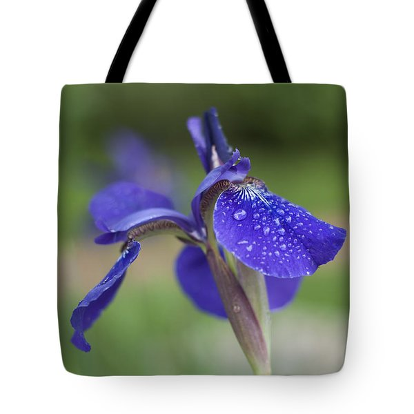 Tote Bag featuring the photograph Tranquility by Miguel Winterpacht