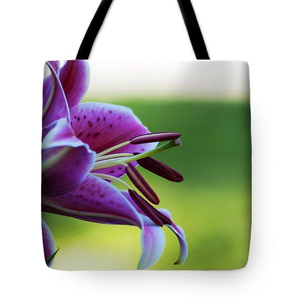 Transcendent Desire Tote Bag