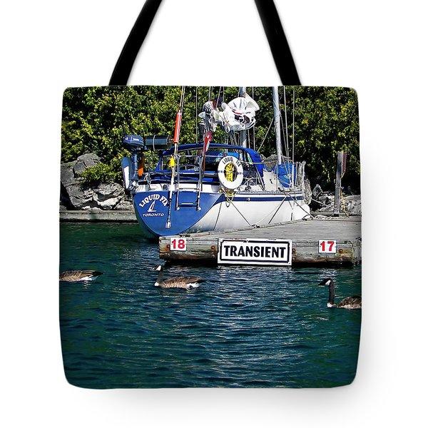 Transients Tote Bag by Steve Harrington