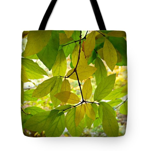 Transparency Tote Bag by Patricia Strand