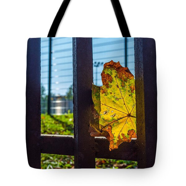 Trapped And Slowly Dying Tote Bag