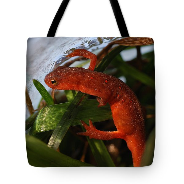 Travels Of A Newt Tote Bag