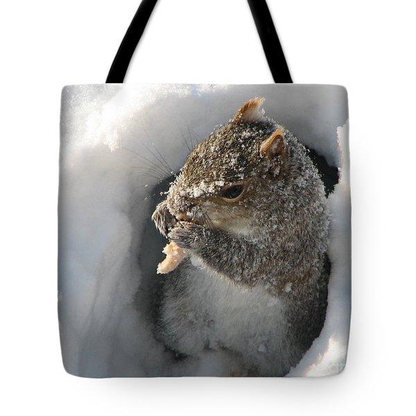 Treasure Found Tote Bag