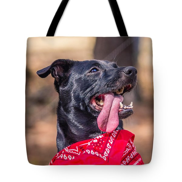 Tote Bag featuring the photograph Treat Please by Rob Sellers