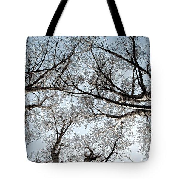 Tree 2 Tote Bag