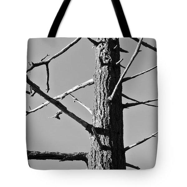 Tree Ancestor Tote Bag