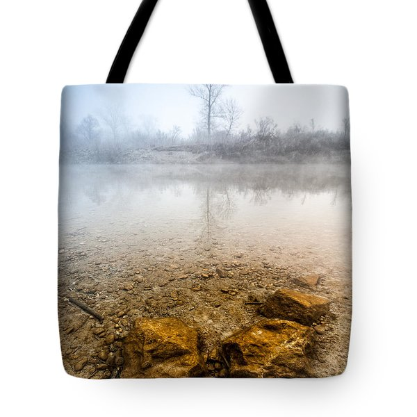 Tree And Rocks Tote Bag by Davorin Mance