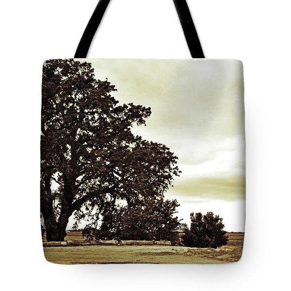 Tree At End Of Runway Tote Bag