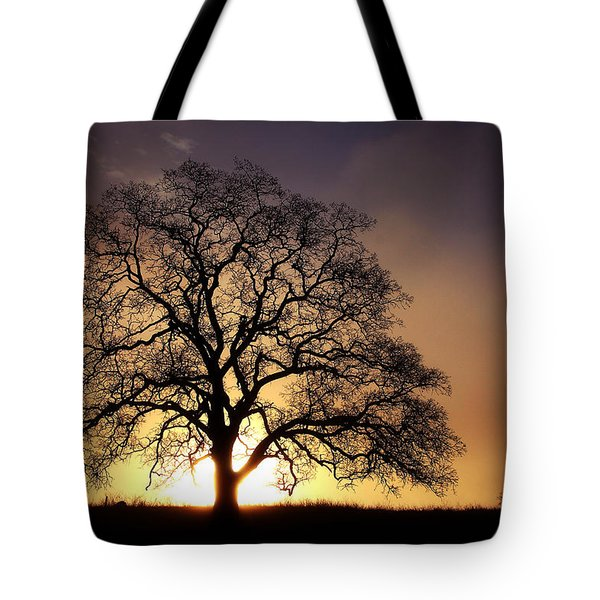 Tree At Sunrise In The Fog Tote Bag