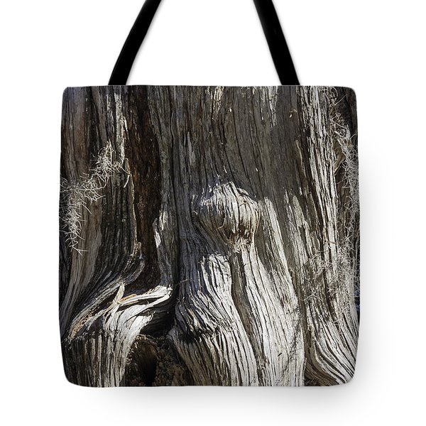 Tree Bark No. 3 Tote Bag by Lynn Palmer