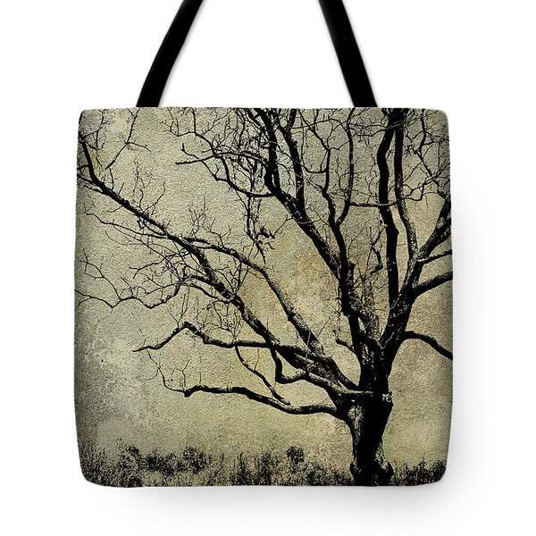 Tree Before Spring Tote Bag